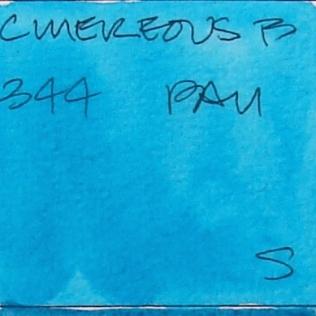 W16 6 5 BLUE GREEN 019