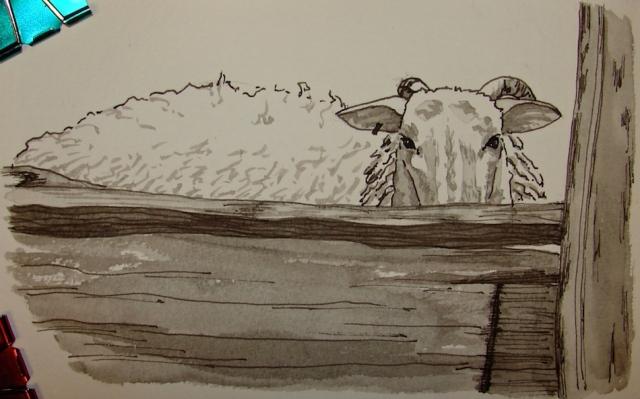 w16-12-11-pentalic-dans-sheep-01