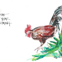 w17-1-9-nost-hawaiin-rooster-300-2