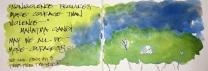 W17 5 13 EDIM TREE 03