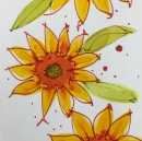 W17 9 6 NOST SUNFLOWER-SQ