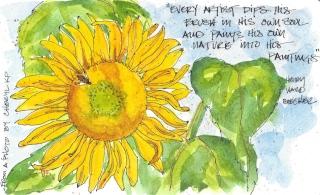 w16-9-11-pentalic-cheryl-sunflower-03