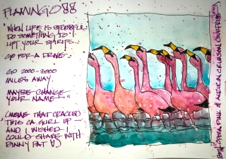 W18 9 10 NOST FLAMINGOS-3712