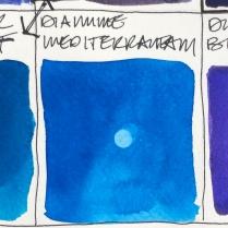 W19 1 BLUE-8346