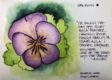 W19 2 4 NOST NEW MOON PANSY-8562