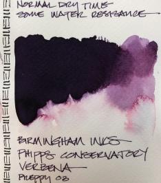 W19 INK BIRMINGHAM VERBENA-4438