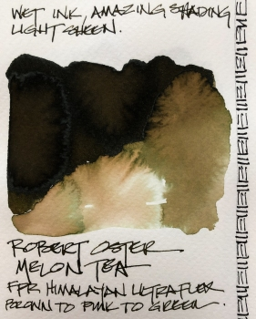 W19 INK ROBERT OSTER MELON TEA-4482