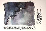 W20 1 25 NOST BOTTLE SHIMMER INKS-3842-2