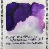W20 INK PILOT IROSHIZUKU MURASAKI SHIKIBU-3238