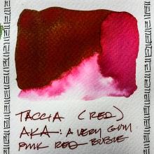 W20 INK TACCIA AKA-3262