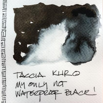 W20 INK TACCIA KURO-3268
