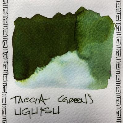 W20 INK TACCIA UGUISU-3261