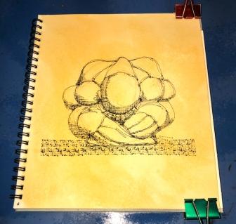 W20 51 LOJONG SHELLAC INK-5669