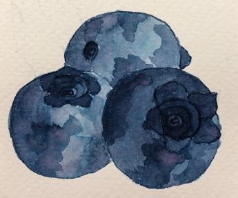 W20 7 10 RO MIDNIGHT SAPPHIRE INK-9985