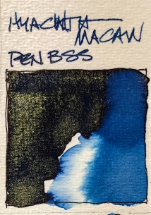 W20 7 10 SHIMMER INK BLUE-0139