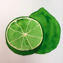 Filled in the bottom of the lime.