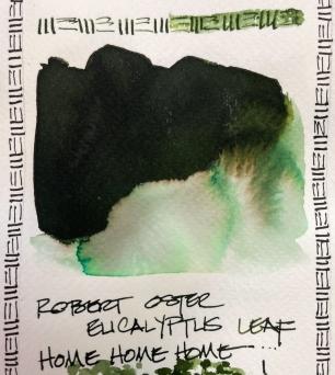 W21 6 INK RO EUCALYPTUS LEAF-9945
