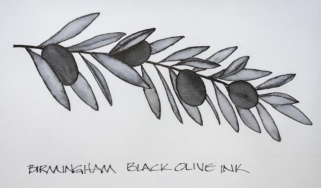 W21 8 1 HEMP BIRM BLACK OLIVE-1243