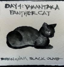 W21 8 4 SKETCHBACK BLACK OLIVE CAT-1254