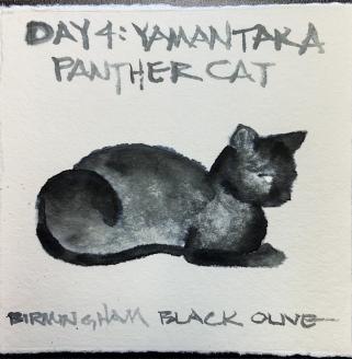 W21 8 4 SKETCHBACK BLACK OLIVE CAT-1255